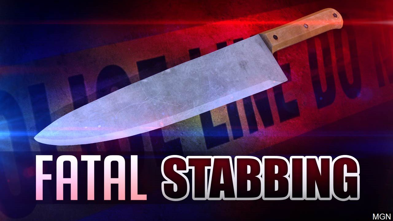 State police: Daughter, 21, fatally stabs mom in Perkiomen