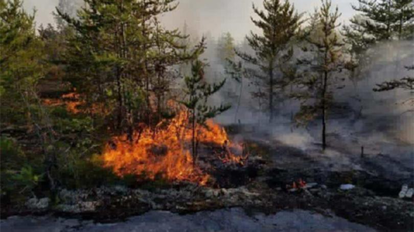 Beekmantown Fire Dept.